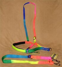Nylon Horse Nose Band & Tie Down MATCHING RAINBOW SET - New Horse Tack