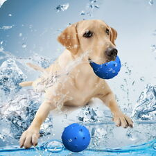 Pet Dog Puppy Blue Hydrating Freezable Water Chew Ball Toy Pet Dog Funny Toy Hot