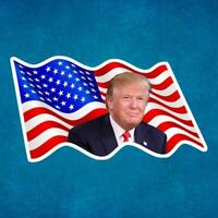 DONALD TRUMP USA FLAG removable / reusable vinyl decal sticker for car ~ truck