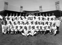 MLB 1969 Seattle Pilots Black & White Team Picture 8 X 10 Photo Picture