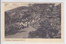 AK Waldbach, Oststeiermark, 1926