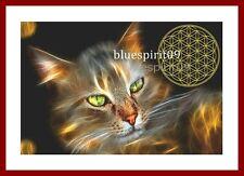 Energiebild Die Blume des Lebens - Magische Katze