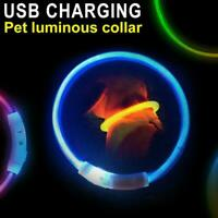 Rechargeable USB Waterproof LED Flashing Light Band Pet Collar Safety Dog J1M7
