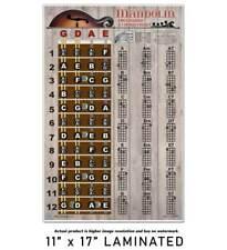 Laminated Mandolin Easy Chord & Fretboard Chart Poster Notes Beginner Chords