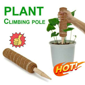 Coir Moss Totem Pole Creeper Plant Support Climbing Extension Garden Stick SALE