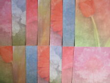 "12x12"" papel de Scrapbook-Color Flores papeles de Bellas Artes - 14 Hojas Floral"