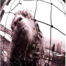 CDs de música rock Pearl Jam