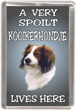"Kooikerhondj Dog Fridge Magnet  ""A VERY SPOILT KOOIKERHONDJE LIVES HERE"""