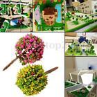 30x Mixed Flower Trees Model Train Garden Scenery Landscape Layout HO 1:100 New