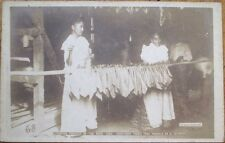 Cuba/Cuban Cigar 1915 AZO Realphoto Postcard: 'Stringing Tobacco In The Barn'
