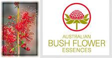 FIORI AUSTRALIANI Freshwater Mangrove PREGIUDIZI-ASPETTATIVE/Apertura-Umiltà
