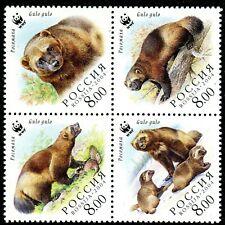 311 - Russia 2004 - WWF - Bear - MNH Set