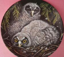 WEDGWOOD GREAT GREY OWL CHICKS PLATE DICK TWINNEY THE BABY OWLS SERIES