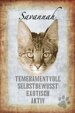 Savannah Katze Cat Blechschild Schild gewölbt Metal Tin Sign 20 x 30 cm