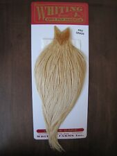 Fly Tying Whiting Pro Rooster Cape Barred Medium Ginger #B