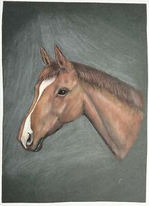 Vintage Original Pencil Drawing Paint Horse Head Portrait 1960s Art Color Board