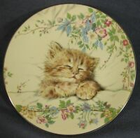 Cat Nap Collector Plate Kitten Classics Pam Cooper Royal Worcester 1985