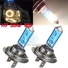 2x H7 12V 55W Xenon White 6000K Halogen Car Head Front Light Lamp Globes / Bulbs