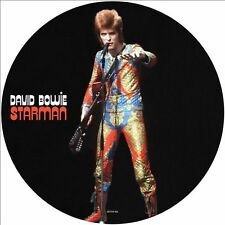 David Bowie Picture Disc Vinyl Records