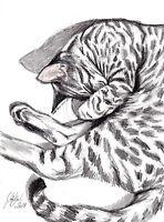 ★Et ça roupille ..!★21x29cm gatto cat katze chat S.GAUDOU ★Drouot