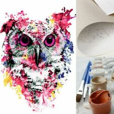 Classical Lonely Colorful Owl Propylene Paint By Numbers Kits Adults DIY Tools