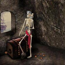 Pose de Halloween-n-Estancia Pirata Esqueleto Lifesize Party Prop 1.5m 5ft Nuevo