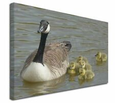 More details for canadian geese and goslings x-large 30