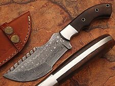 Custom Made Damascus Tracker Knife With Coco Bolo Wood Handle (DM2264)