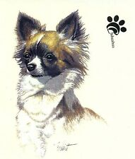 "2 Chihuahua Long Haired White Black Tan Dog 3 1/2"" Waterslide Ceramic Decals Tx"