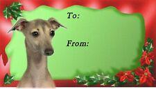 Italian Greyhound Christmas Labels by Starprint