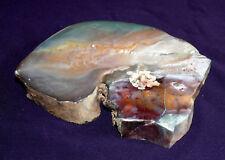 Barbalite-Jaspis, McDermitt, neuer Fund, Oregon 252,4g 107x83x15mm, Heilstein