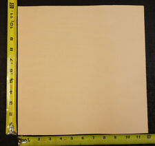 "12"" x 12"" Vegetable Tanned Cowhide 2 to 3 oz. Tooling Leather Piece, 1St. QLTY"