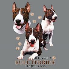 Not Bull Terrier Just Dog Size Youth Small-6 X Large T Shirt Pick Size