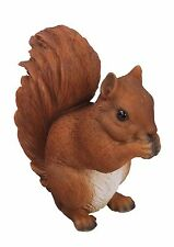 Vivid Arts - REAL LIFE WOODLAND ANIMALS - Red Squirrel Standing