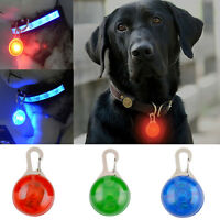 Hot Fascinating Pet Dog Cat Puppy LED Flashing Collar Safety Night Light Pendant