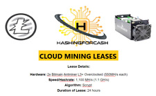 1 day 1,100 MH/s Litecoin Crypto Rental Mining Rental L3+ Server Lease LTC DOGE