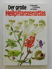 Der große Heilpflanzenatlas Francesco Bianchini Francesco Corbetta Unipart