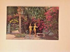 Weeki Wachee Postcard Florida, Entrance, Women in Bathing Suits