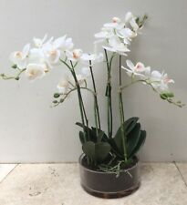 Premium Quality New Artificial Fake Phalaenopsis Orchid in round glass vase 51cm