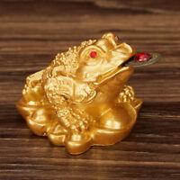 Feng Shui Amuleto de la suerte Regalo Afortunado de Joyas de monedas Decorac*QA