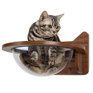 Wandliege Katzenliege Katzenbett Katzen Korb transparent Katzenmöbel Holz