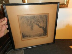 framed and matted signed antique engraving, old craggy tree; all original