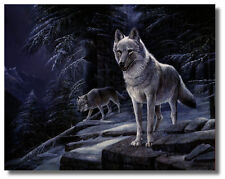 2 Wolves, on Mountaintop 16x20 Ruane Manning Wall Art Print Picture sku#16-8044