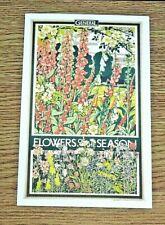LONDON TRANSPORT POSTER POSTCARD ~ FLOWERS OF THE SEASON ~ WALTER E. SPRADBERY