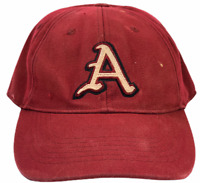 Arkansas Razorbacks NCAA Top Of The World Fitted Hat