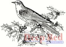 Deep Red Stamps Bird and Holly Rubber Cling Stamp
