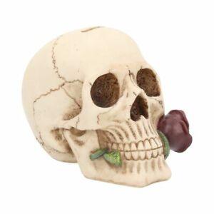 Figur, Fantasy, Tod, Schädel, Spardose, Rose, Argentine Skull