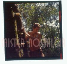 "Vintage Photo 1967 Ron Ely as Tarzan 2"" Color Slide Transparency rare original"