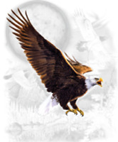 eagle t-shirt youth adult school beautiful boy girl men women US size 2