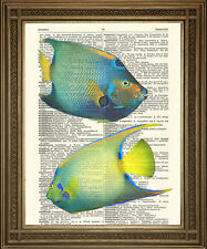 EXOTIC FISH DICTIONARY PRINT: Blue, Yellow Art Illustration on Vintage Paper